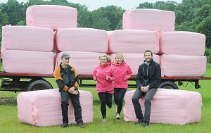 Farm turns pink for Race for Life